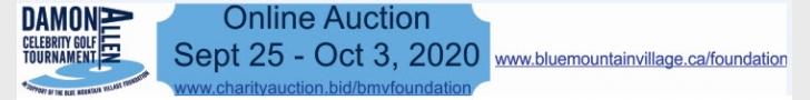 BMVA Auction